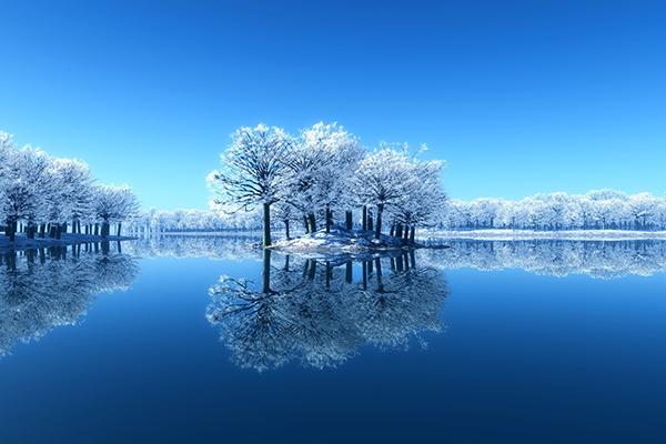 vital höst och vinter